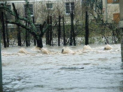alerte sms inondation